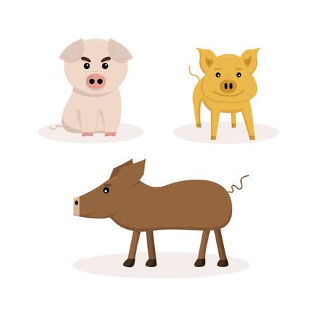 set of three pigs on white background 向量圖像
