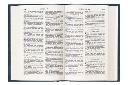 gospels: Open English Bible