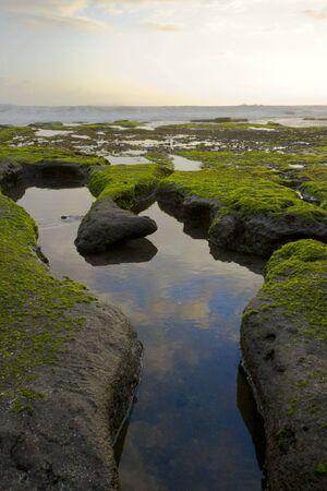 ebb: Foot kształcie pustaków w oceanie wybrzeżu podczas wieczoru ebb