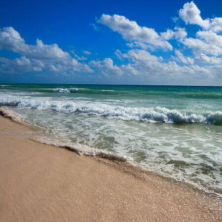 carribean: Beautiful beach and  waves of Caribean Sea