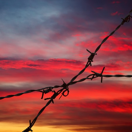 Barbed wire on sunset sky background Stock Photo - 7937789