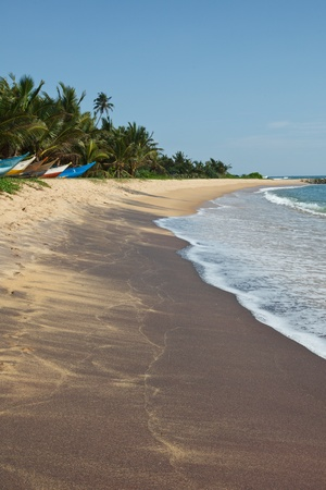 Tropical paradise idyllic beach. Sri Lanka photo