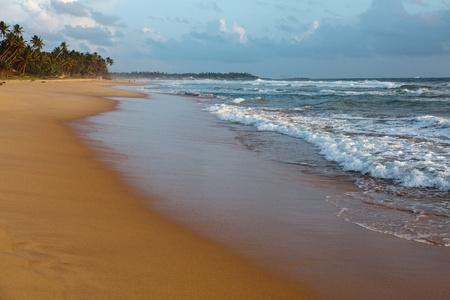 Tropical beach on sunset. Sri Lanka  photo