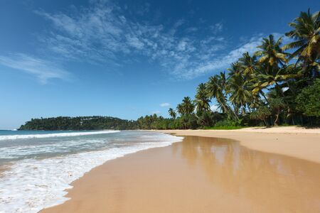 Tropical paradise idyllic beach. Sri Lanka Stock Photo - 8971740