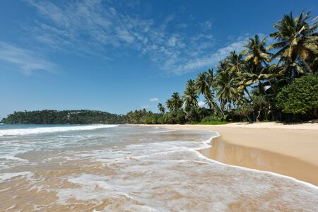Tropical paradise idyllic beach.  Mirissa, Sri Lanka Stock Photo - 8971734
