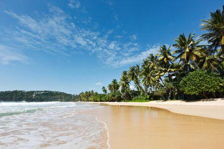 Tropical paradise idyllic beach.  Mirissa, Sri Lanka Stock Photo - 8971784