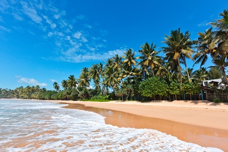 Plage idyllique de paradis tropical. Sri Lanka