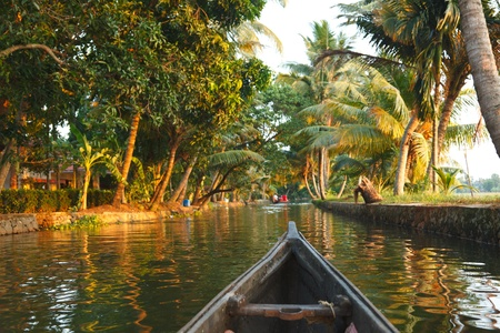 backwater: Travelling in canoe on Kerala backwaters. Kerala, India Stock Photo