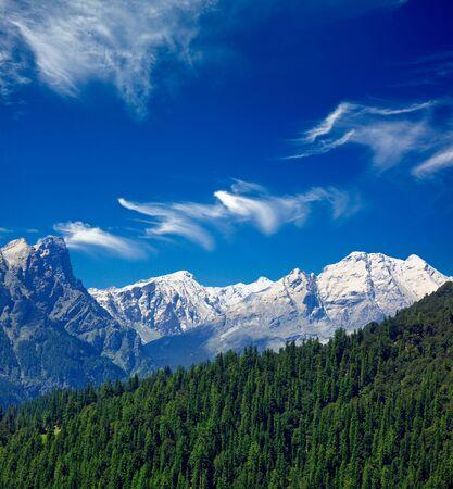himalayas: Himalayas and forest. India