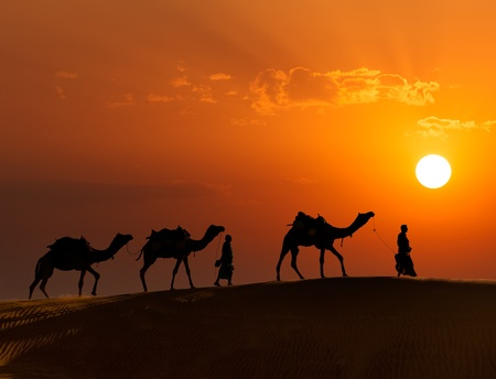 Rajasthan travel background - two indian cameleers camel drivers with camels silhouettes in dunes of Thar desert on sunset Jaisalmer, Rajasthan, India