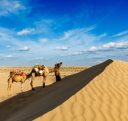 traveled: Rajasthan travel background - India cameleer  camel driver  with camels in dunes of Thar desert  Jaisalmer, Rajasthan, India