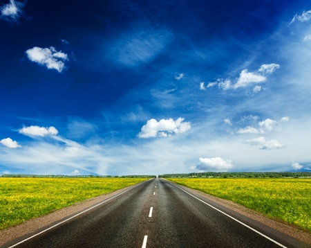 Travel concept background - road in blooming spring meadow photo