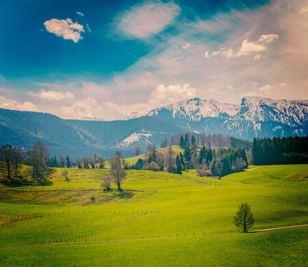 pastoral: German idyllic pastoral countryside in spring with Alps in background. Bavaria, Germany