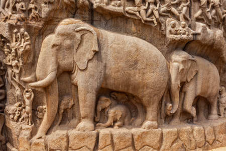 pallava: Elephants on descent of the Ganges and Arjunas Penance ancient stone sculpture - monument at Mahabalipuram, Tamil Nadu, India