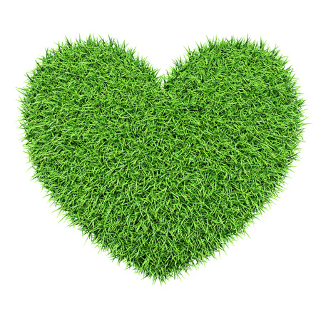 environmental issues: Ecology eco conservation nature love creative concept - green heart made of grass isolated on white background