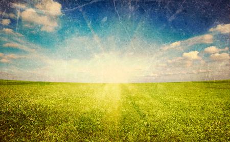 cross process: Sunset sun and field of green fresh grass under blue sky