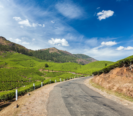 agriculture india: Kerala India travel background - road in green tea plantations in mountains in Munnar, Kerala, India