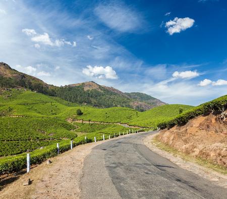 rural india: Kerala India travel background - road in green tea plantations in mountains in Munnar, Kerala, India