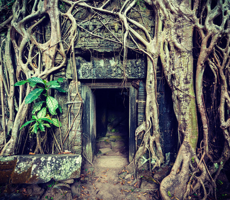 cross processed: Vintage retro effect filtered hipster style travel image of ancient stone door and tree roots, Ta Prohm temple ruins, Angkor, Cambodia