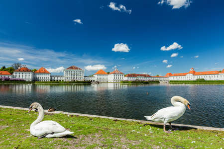 nymphenburg palace: Swans in garden in front of the Nymphenburg Palace. Munich, Bavaria, Germany