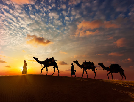bedouin: Rajasthan travel background - two indian cameleers (camel drivers) with camels silhouettes in dunes of Thar desert on sunset. Jaisalmer, Rajasthan, India Stock Photo