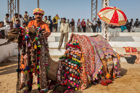 PUSHKAR, INDIA - NOVEMBER 22, 2012: Man decorating his camel for camel decoration contest at Pushkar camel fair (Pushkar Mela) -  annual five-day camel and livestock fair, one of the world's largest camel fairs and tourist attraction