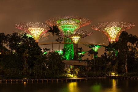 SINGAPUR - 31 de diciembre 2013: Vista nocturna de Supertree Grove en los jardines por la bahía. Parque futurista extiende por 101 hectáreas está a convertirse en primer ministro de Singapur espacio de recreación al aire libre urbano e icono nacional