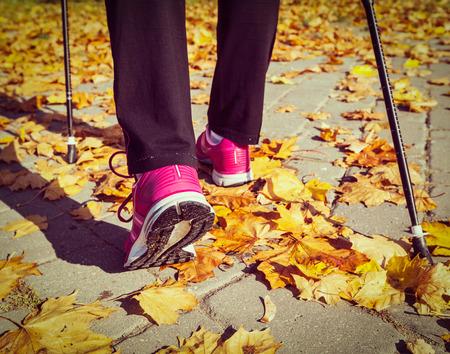 Nordic walking photo