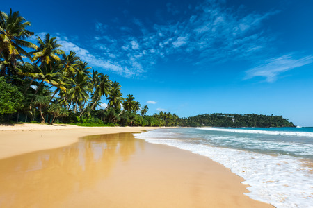 beaches: Idyllic beach. Sri Lanka