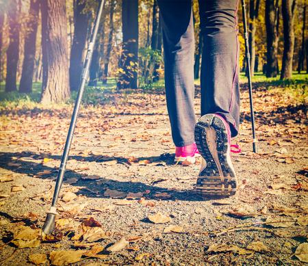walking pole: Nordic walking