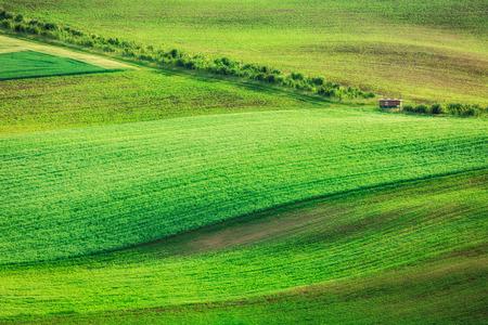 moravia: Rolling landscape of  South Moravia