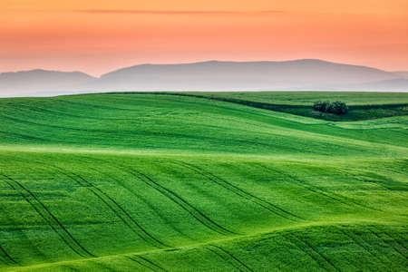 Moravia rolling landscape on sunrise
