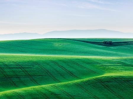 Moravian rolling landscape. South Moravia, Czech Republic