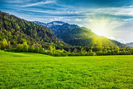 Alpage dans les Alpes bavaroises. Bavière, Allemagne
