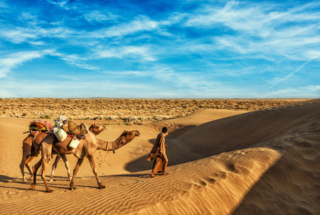 Rajasthan travel background - India cameleer (camel driver) with camels in dunes of Thar desert. Jaisalmer, Rajasthan, India