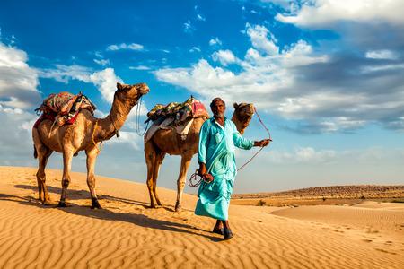 camel in desert: Rajasthan travel background - Indian cameleer (camel driver) with camels in dunes of Thar desert. Jaisalmer, Rajasthan, India Stock Photo