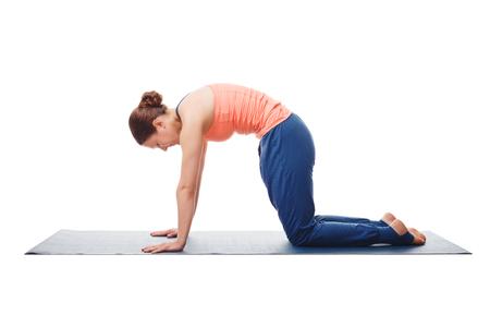 warm up: Bella sportiva fit donna yogini pratiche yoga asana marjariasana - gatto posa delicato riscaldamento per colonna vertebrale (chiamata anche cat-mucca posa) isolato su bianco Archivio Fotografico