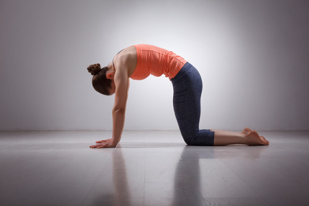 yogini: Beautiful sporty fit yogini woman practices yoga asana marjariasana - cat pose gentle warm up for spine (also called cat-cow pose) in studio Stock Photo