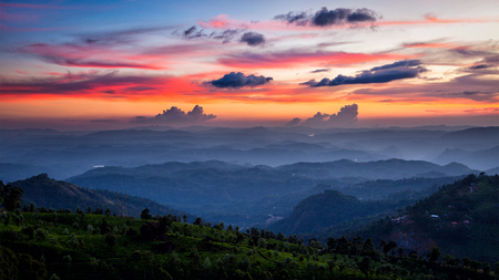 Panorama van de zonsondergang in de bergen met theeplantages. Munnar, Kerala, India
