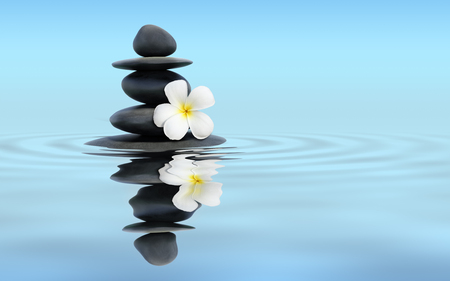 Zen spa concept panoramic banner image - Zen massage stones with frangipani plumeria flower in water reflection Stockfoto