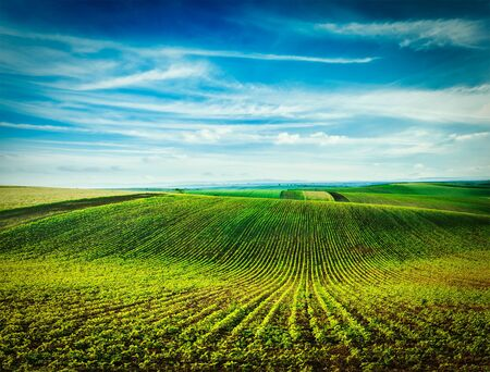 furrow: Vintage retro effect filtered hipster style image of Rolling fields of Moravia, Czech Republic