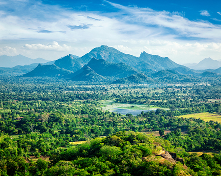 aerial view: Sri Lankan landscape - view form Sigiriya rock, Sri Lanka, Stock Photo
