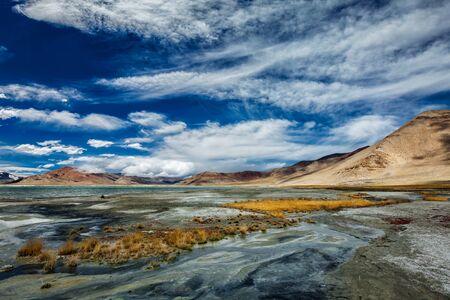 kashmir: Tso Kar - fluctuating salt lake in Himalayas. Rapshu,  Ladakh, Jammu and Kashmir, India