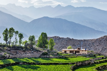 pradesh: Nako village in Himalayas, Himachal Pradesh, India