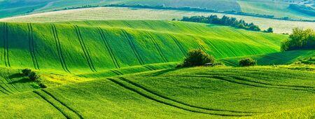 moravia: European rural wallpaper - panorama of Moravian rolling fields landscape, Moravia, Czech Republic Stock Photo