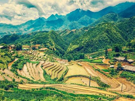 sapa: Vintage retro effect filtered hipster style image of rice field terraces (rice paddy fields). Near Cat Cat village - popular tourist trekking destination. Near Sapa, Vietnam Stock Photo