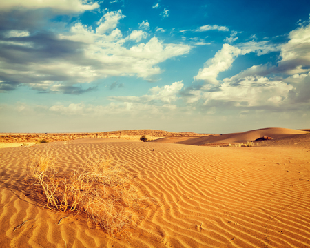 thar: Vintage retro effect filtered hipster style image of  dunes of Thar Desert. Sam Sand dunes, Rajasthan, India