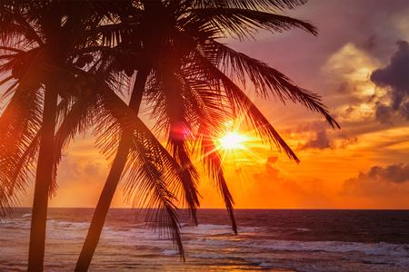 Beach resort vakantie vakanties achtergrond - tropische oceaan zonsondergang scène met palmen. copyspace