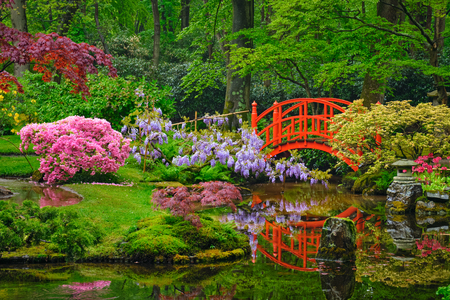 Japanse tuin, Park Clingendael, Den Haag, Nederland