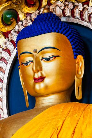 Sakyamuni Buddha statue 免版税图像